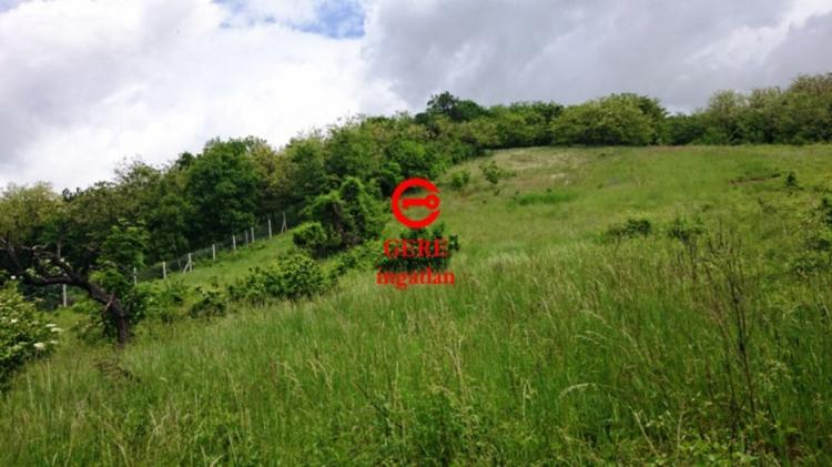 Verkaufen Grundstück Vác Papvölgy út 16936 m<sup>2</sup> 99 millió Ft