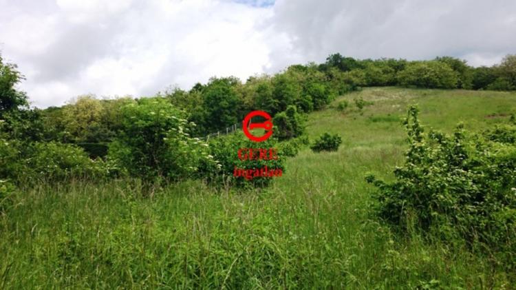 For sale plot of land, building lot Vác Papvölgy út 16936 m<sup>2</sup> 99 millió Ft