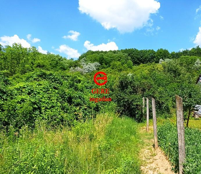 Verkaufen Grundstück Vác Papvölgy út 3200 m<sup>2</sup> 29 millió Ft