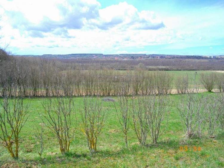 For sale plot of land, building lot Keszthely  1236 m<sup>2</sup> 3 millió Ft